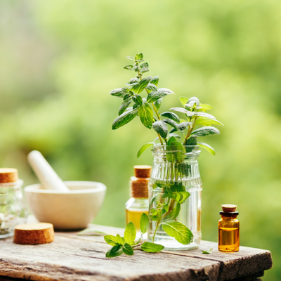 essential oil mosquitos