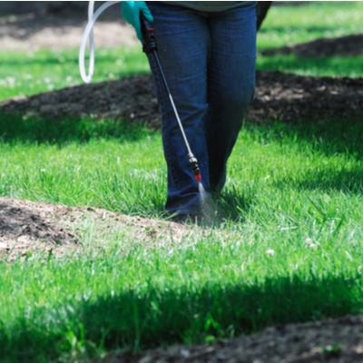 professional applying pre emergent weed spray