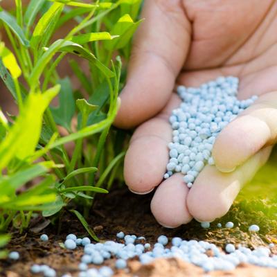 hand with nitrogen fertilizer in garden